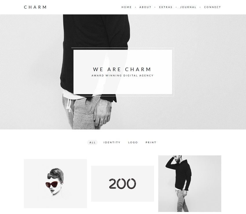 portfolio wordpress theme - charm